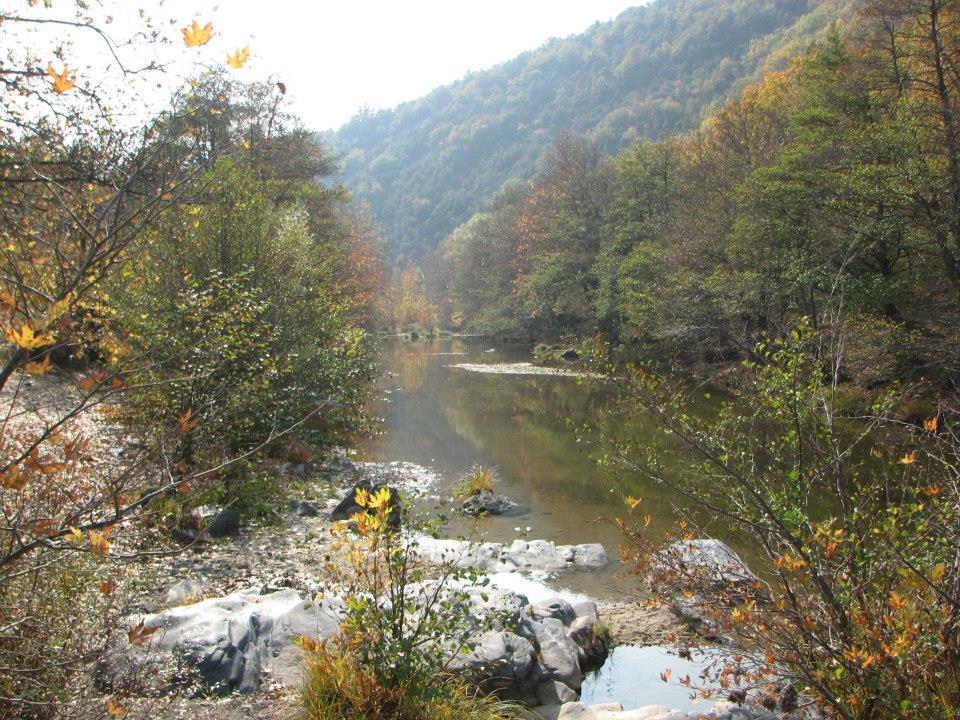 Бяла река
