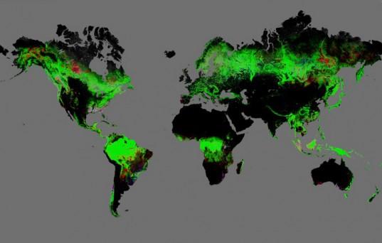 Карта на обезлесяването