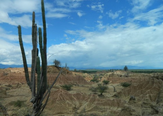 Пустинята Татакоа